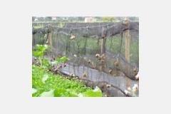 мрежа за отглеждане на охлюви