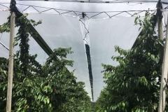 синтетично фолио против дъжд