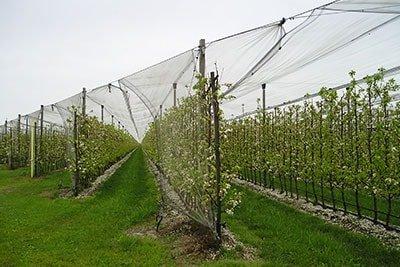 мрежи за земеделие