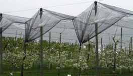 Конструкции за лозя и овощни градини