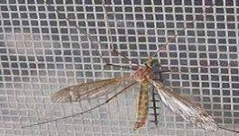 Мрежи против комари