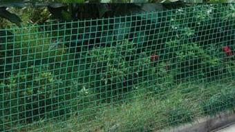 Оградна мрежа в София – оптималното решение за Вашия имот