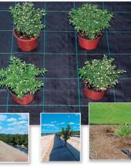 борба с плевелите в градината